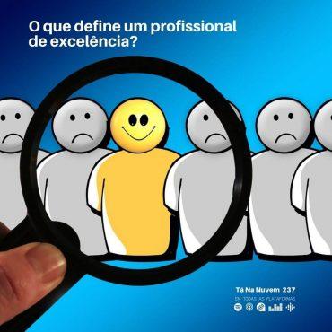 O que defini um profissional de excelência?