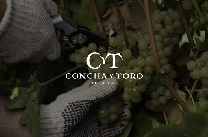 Pure Storage revoluciona operações da Concha y Toro com tradição e tecnologia